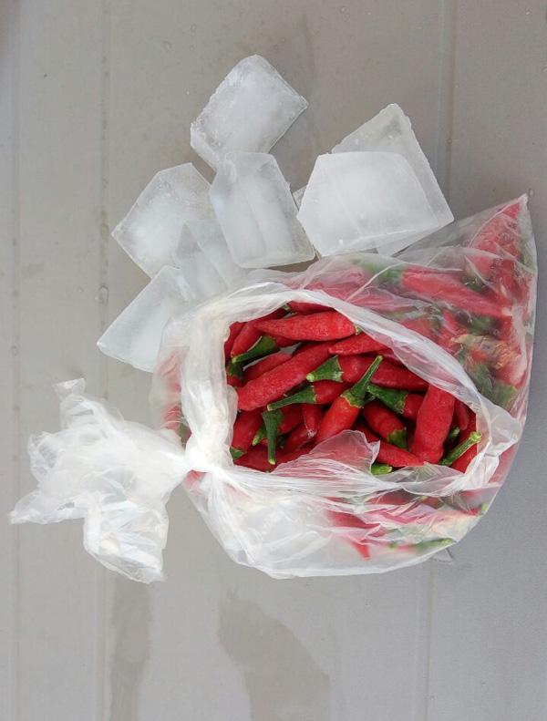 peperoncini-ghiaccio-2.jpg