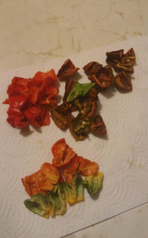 peperoncini-tagliati-per-essiccazione